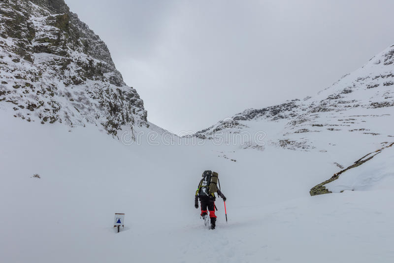 Bergsteiger auf dem Berg lizenzfreie stockfotos