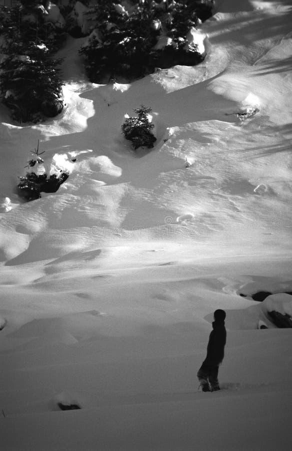 Bergsteiger im Sambata Tal lizenzfreies stockbild
