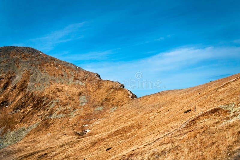 Bergstoppcloseup arkivfoto