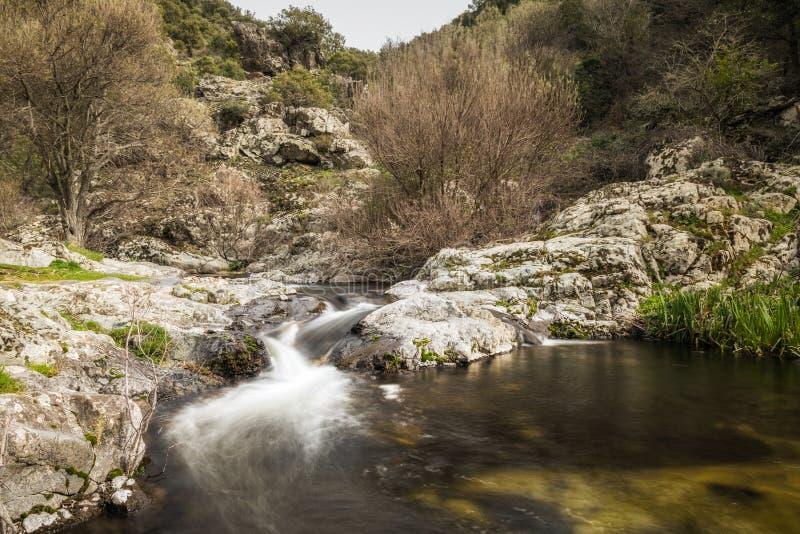 Bergström som applåderar in i en naturlig pöl i Korsika royaltyfri fotografi