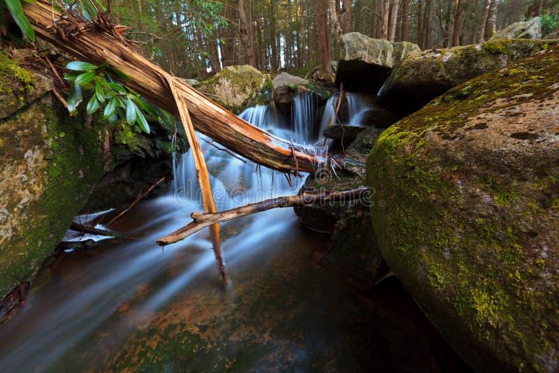 bergströmvattenfall arkivfoton