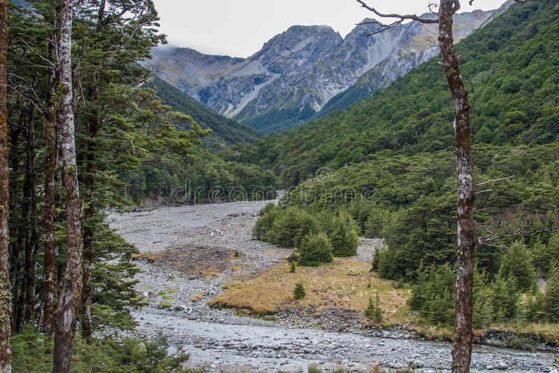 Bergstroom stock afbeelding