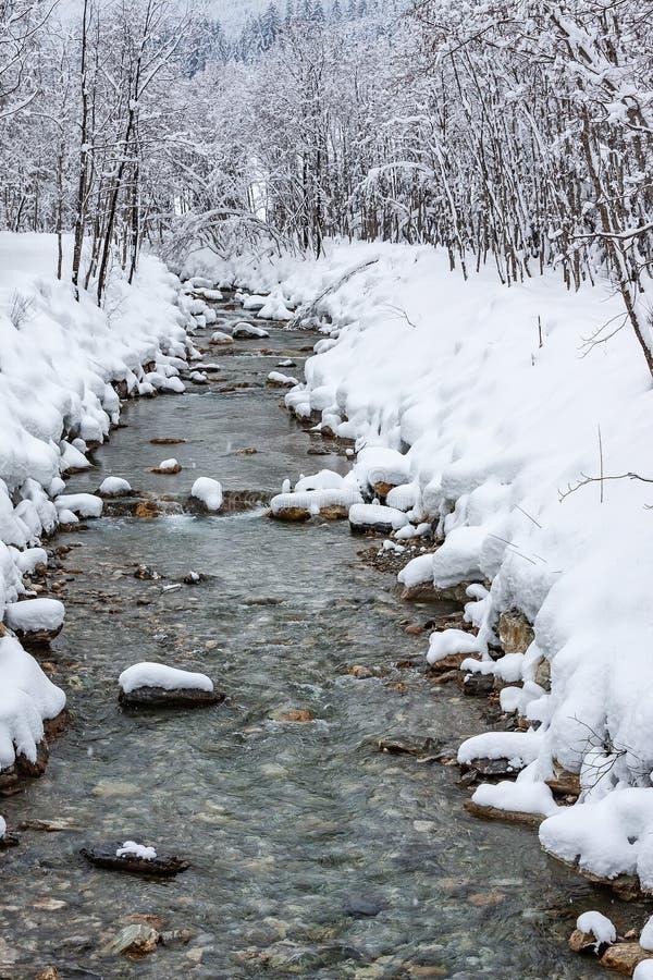 Bergstroom in de sneeuw dichtbij Flachau Oostenrijk stock foto's