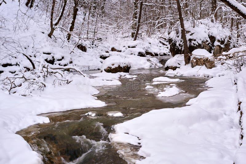 Bergstroom in de Winter stock afbeelding