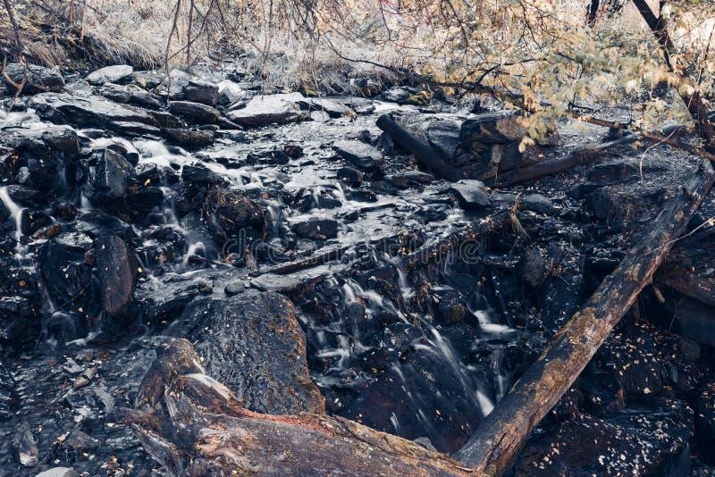 Bergstroom in het bos royalty-vrije stock afbeelding