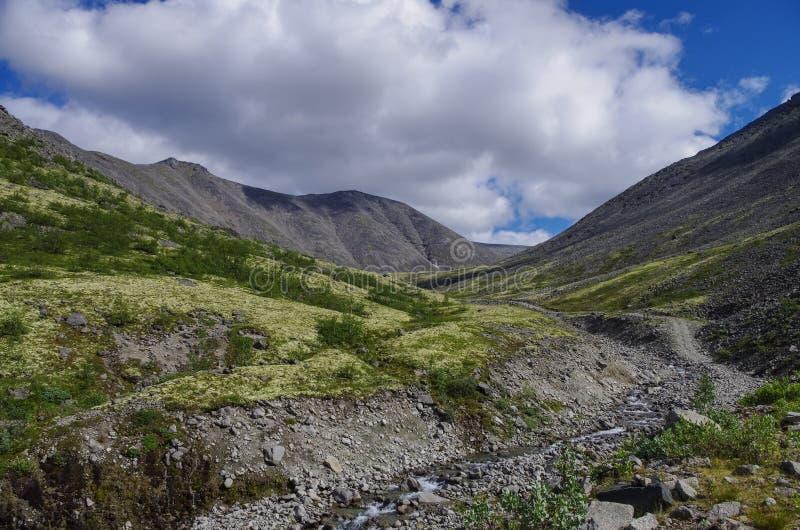 Bergtoendra met mossen en rotsen met korstmossen, Hibiny-bergen boven de Noordpoolcirkel, Kolaschiereiland worden behandeld dat, royalty-vrije stock foto's