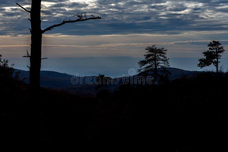 Bergträden av den Michaux tillståndsskogen i Pennsylvania i fa royaltyfria bilder