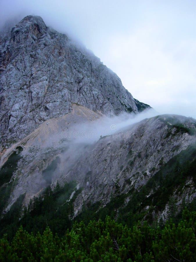 bergtriglav arkivfoto