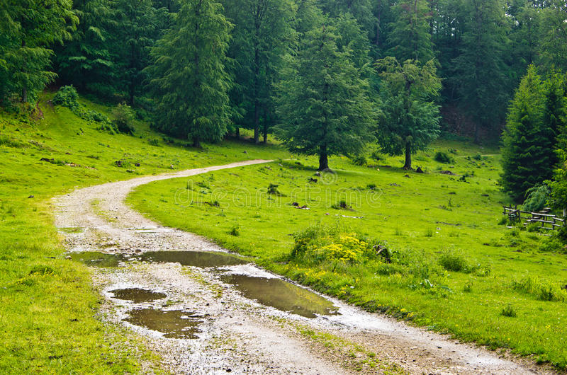 Bergväg efter regn arkivfoto