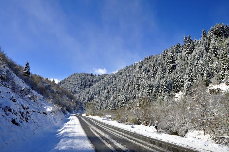 Bergväg i tidig vår arkivfoto