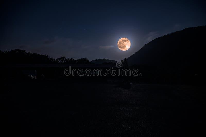 Bergväg till och med skogen på en fullmånenatt Sceniskt nattlandskap av mörker - blå himmel med månen _ royaltyfri fotografi