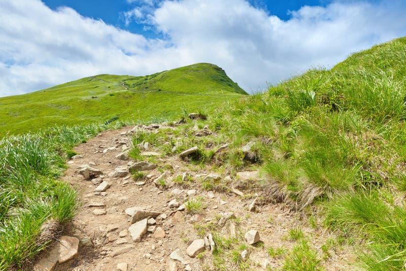 Bergväglandskap carpathians poland arkivbilder
