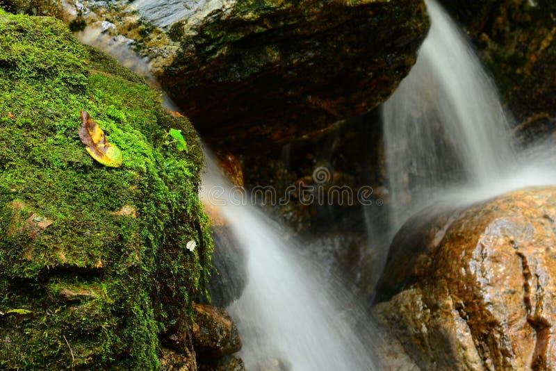 Bergvårvatten arkivbilder