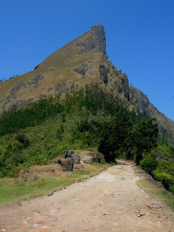 Bergv?glandskap BergCanyon Road landskap Blå himmel i bergdalen royaltyfria foton