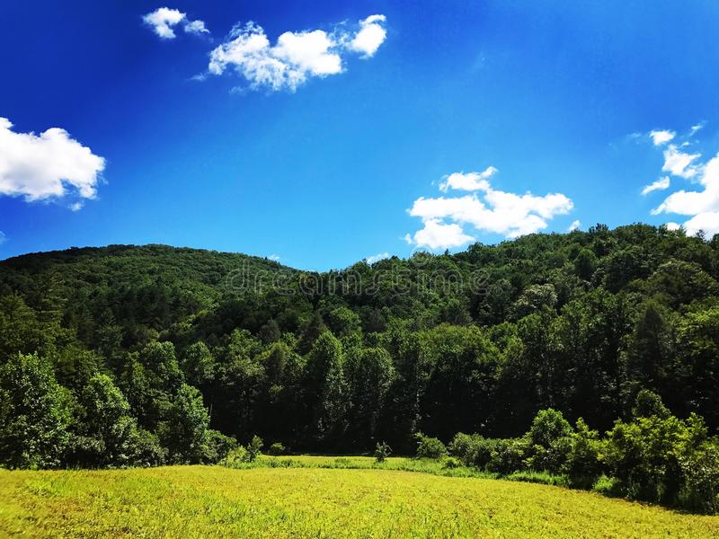 Bergvallei Sunny Day royalty-vrije stock afbeelding