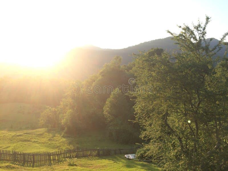 Bergvallei tijdens zonsopgang Natuurlijk de zomerlandschap stock fotografie