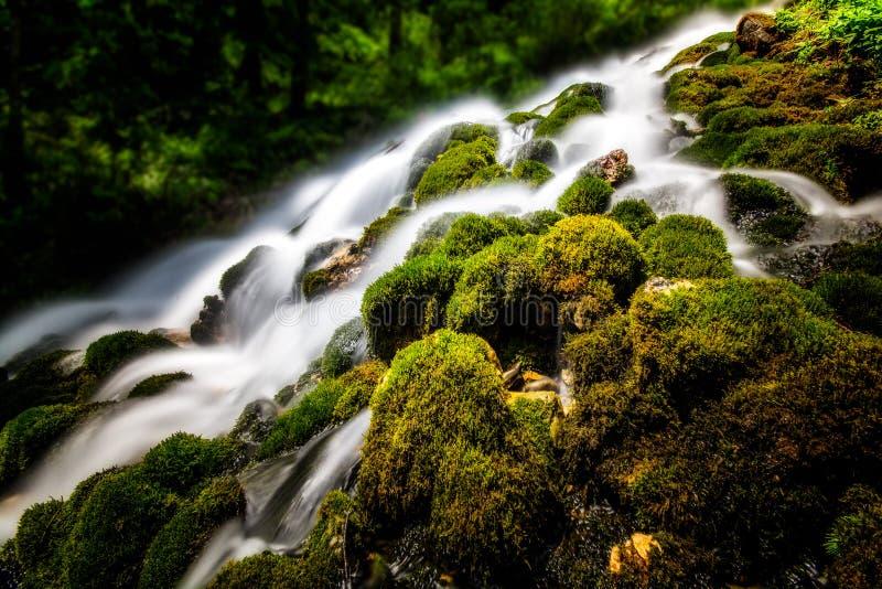 Bergvattenfall med rent vatten och gräsplanvegetation royaltyfria foton