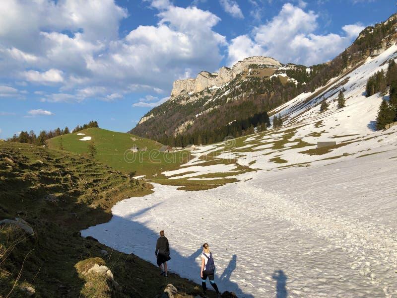 Bergwandelaars in de het Appenzellerland-gebied en Alpstein-bergketen stock fotografie