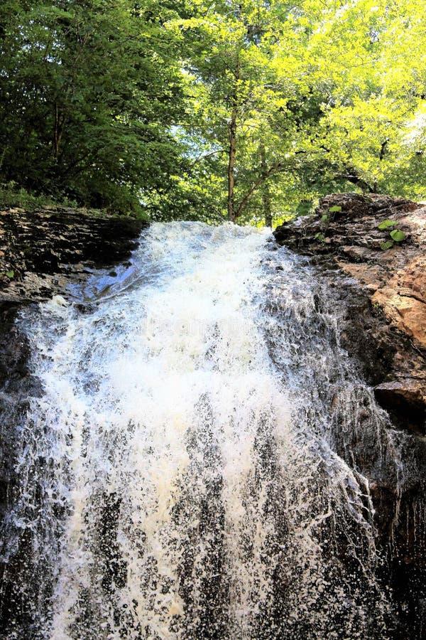 Bergwaterval in een bos in de zomer wordt gevestigd die royalty-vrije stock foto's
