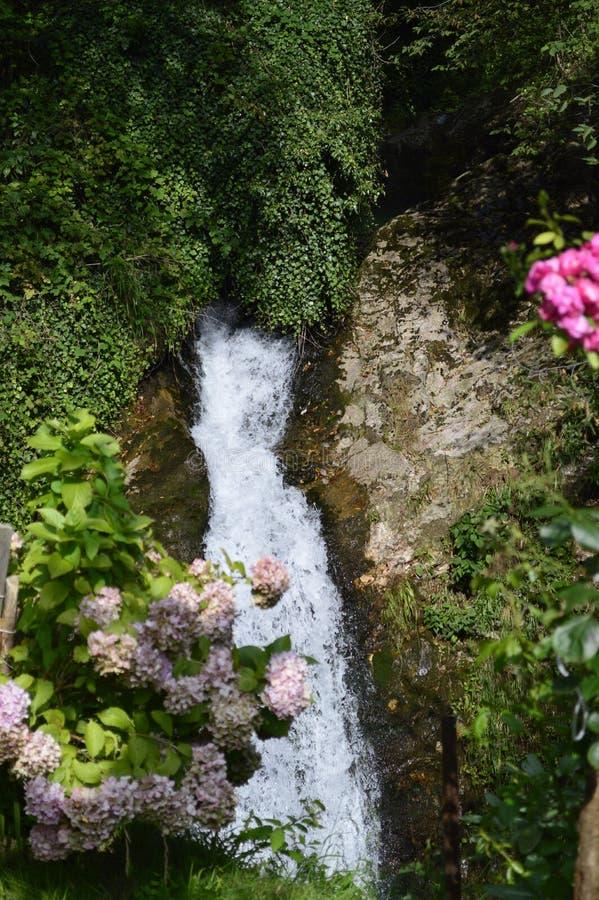 Bergwaterval met moslandschappen royalty-vrije stock afbeelding