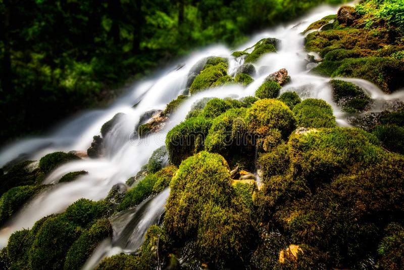 Bergwaterval met zuiver water en groene vegetatie royalty-vrije stock foto's