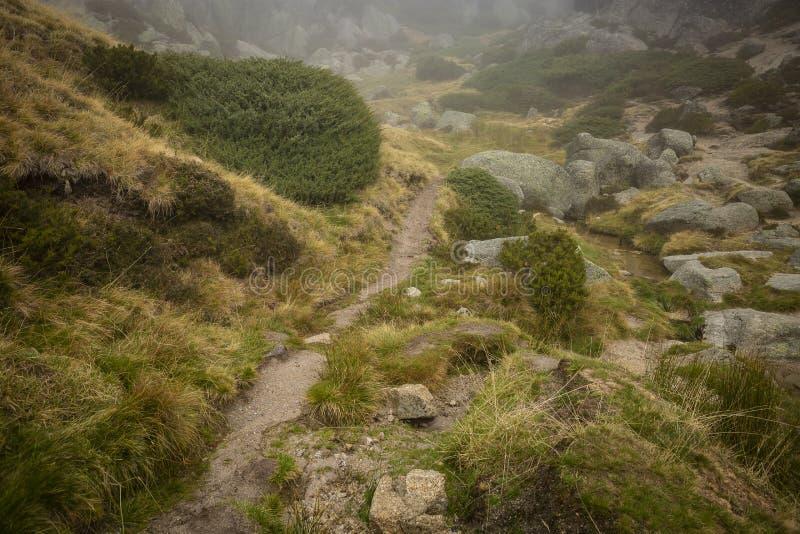 Bergweg in Covao do Boi, Serra da Estrela stock afbeeldingen
