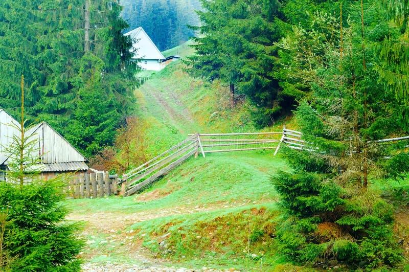 Bergweg die naar huis op achtergrond van bomen leiden, een concept het wild, exemplaarruimte, stock foto
