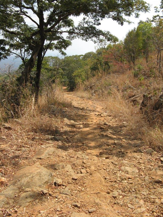 Bergweg, Malawi lizenzfreies stockfoto