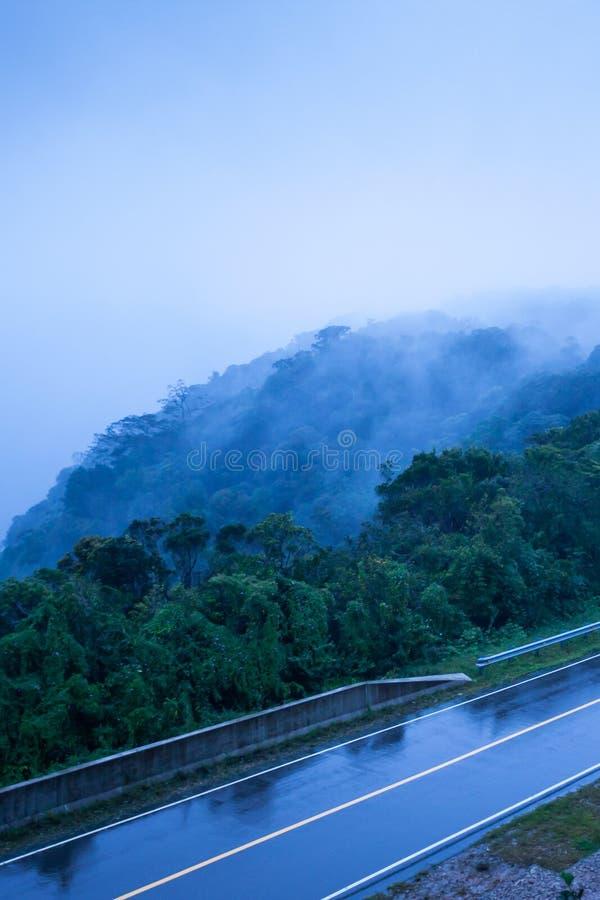 Bergweg in mistige schemer, asfaltweg door de bergbovenkant van de Berg van Phnom Bokor in regenachtige dag, Preah Monivong Bokor stock fotografie