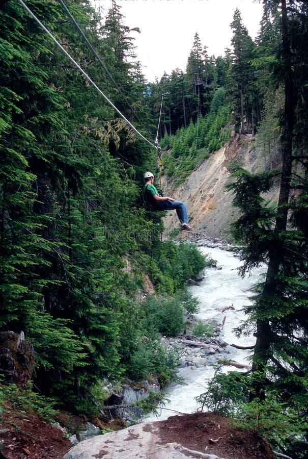 bergwhistler som ziplining arkivfoton