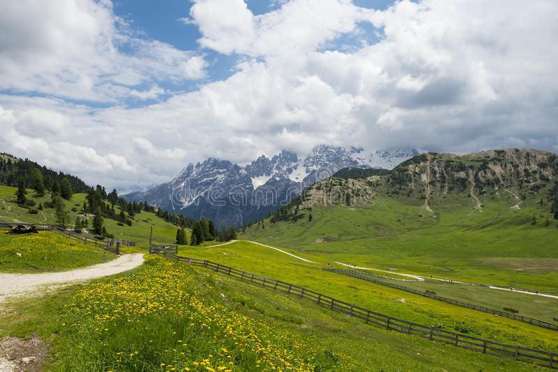 Bergwiesen in den italienischen Dolomit lizenzfreie stockbilder