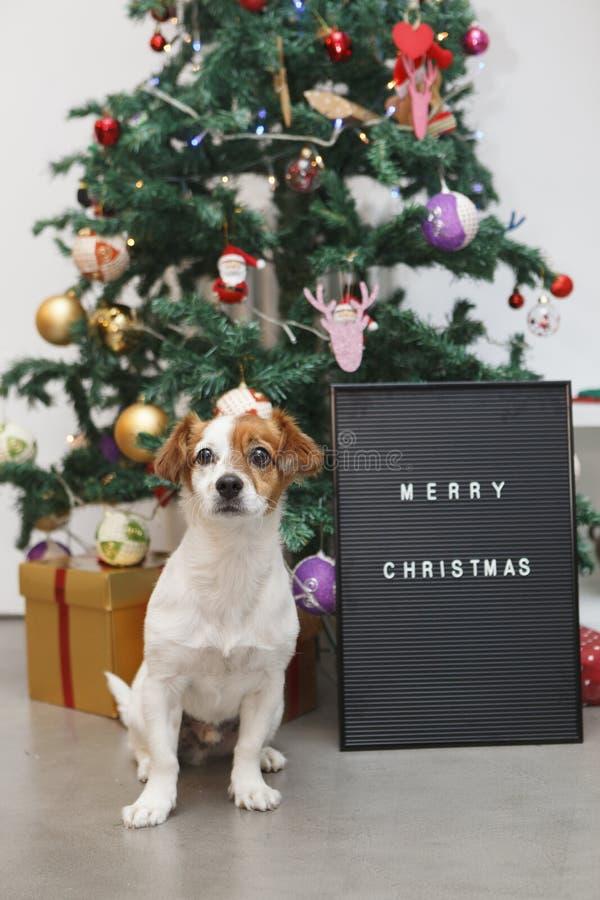 Bericht van vrolijke Kerstmis op een zwarte raad stock foto