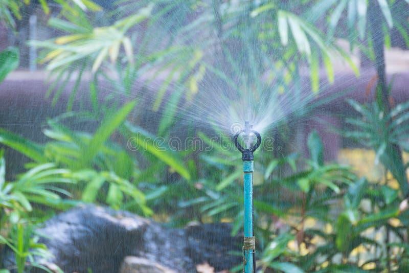 Berieseln Sie die Bewässerung für Anlagen im Garten oder im Park lizenzfreie stockfotos