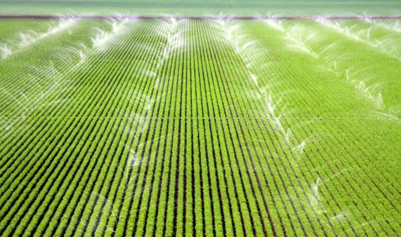 Berieselungsanlagen, die ein Bauernhof-Feld bewässern stockfotos