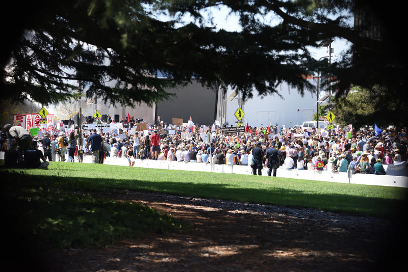 Berkley protesty Przeciw faszyzmowi, rasizmowi i Donald atutowi, obraz stock