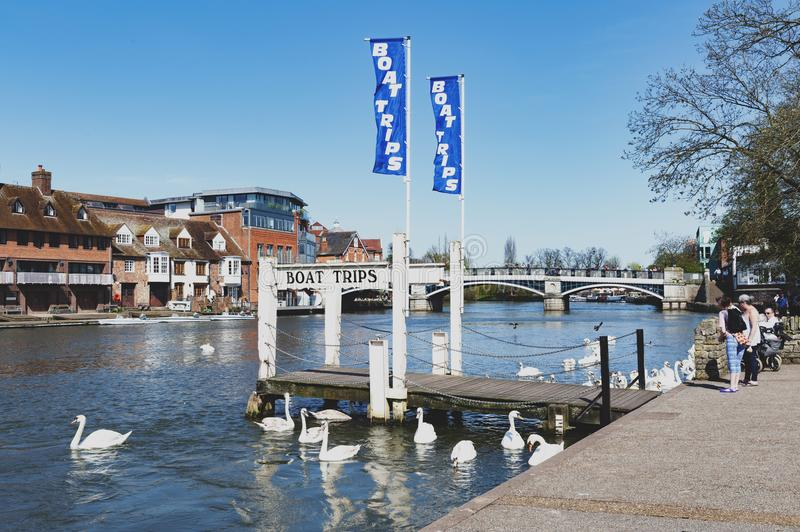 A tourist boat cruise pier by the River Thames located between the towns of Windsor and Eton in Berkshire, UK. Berkshire, UK - April 2018: A tourist boat cruise stock photos
