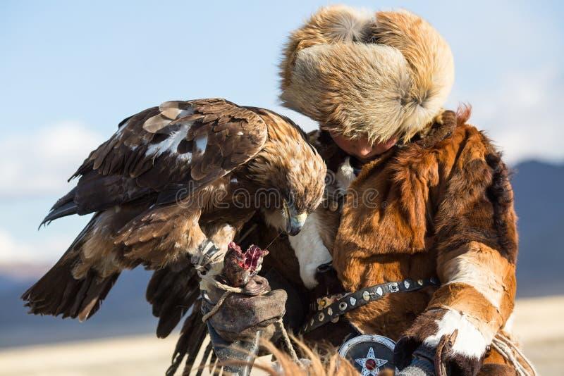 Berkutchi -老鹰猎人传统衣物,当寻找对的野兔拿着在他的胳膊时的鹫 库存图片