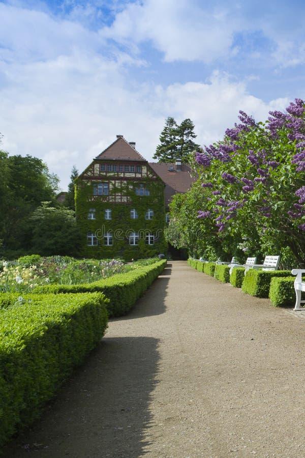 Berliński ogród botaniczny zdjęcia stock