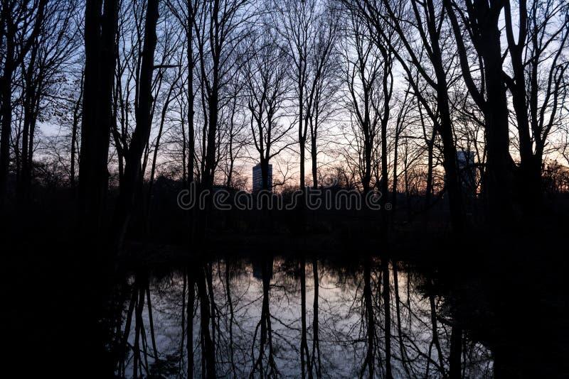 Download BERLIJN, DUITSLAND - JANUARI 14, 2017: Zonsondergang In Tiergarten Stock Foto - Afbeelding bestaande uit silhouet, berlijn: 107700400