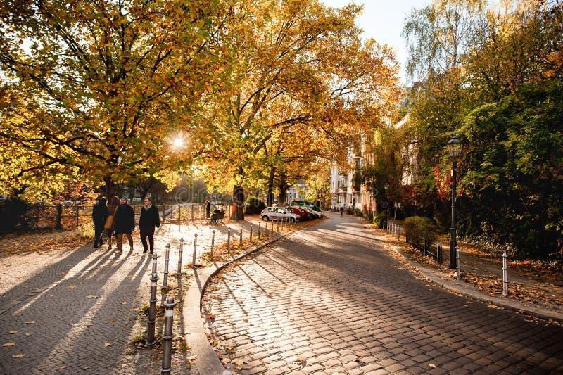 BERLIJN, DUITSLAND - OKTOBER 28, 2012: Het Zonlicht en de Bomen van Berlin Cityscape Autumn View With Mooie Schaduwen stock afbeeldingen