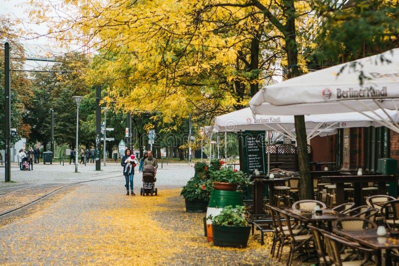 Berlin December 12, 2017: Höststadsplatsen Gata i Berlin Den gula lövverket ligger på trottoaren Familjen fotografering för bildbyråer