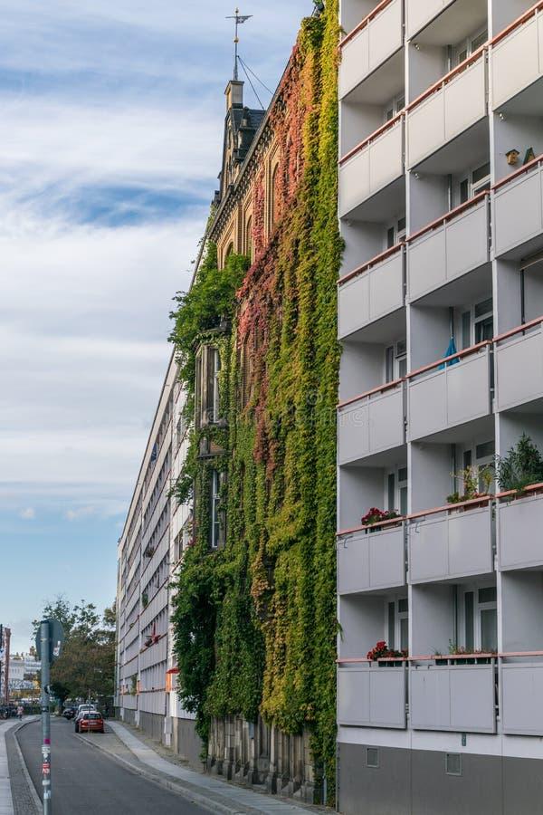 BERLIN, DEUTSCHLAND - 28. Juli 2018: Vorzügliche aufwärts Ansicht einer bunten lebenden Wand in einem Wohngebäude vor lizenzfreie stockfotos