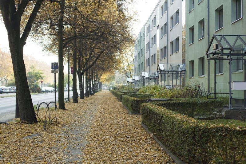 Berlin förort royaltyfri bild