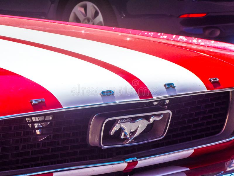 Ford Mustang car royalty free stock photo