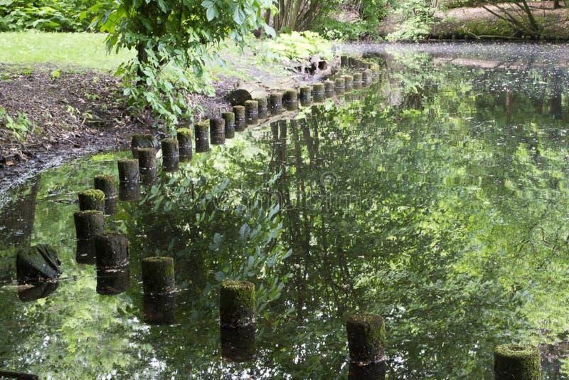 Berlin&-x27; s Neuen Widzii jeziornego brzeg z drewnianymi słupami obraz stock