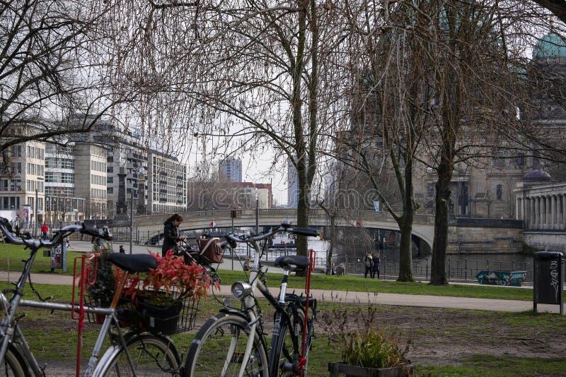 Berlin Tyskland - cyklar i James Simon Park med flodfest och Berlin Cathedral i bakgrund arkivbild