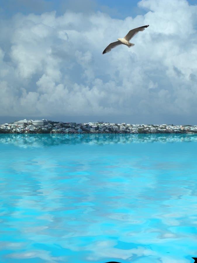 Bermudas imagen de archivo libre de regalías
