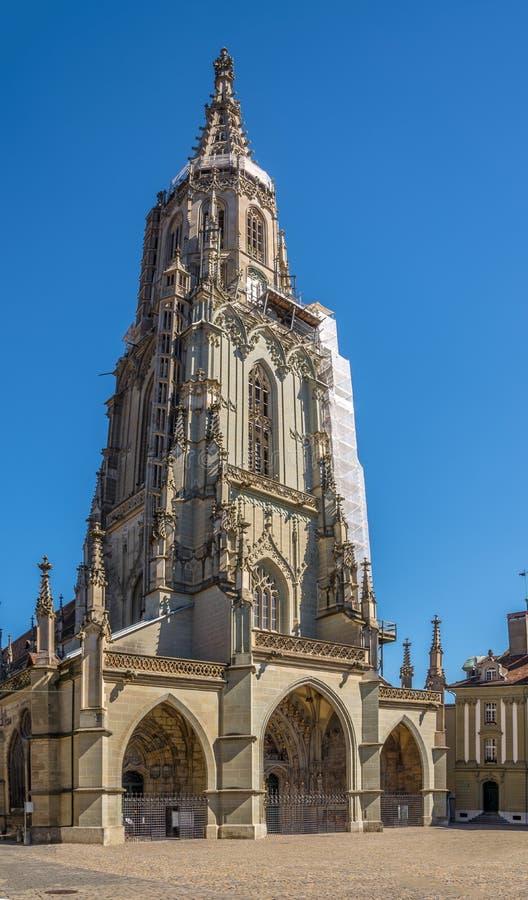 Bern Minster - Kathedrale von Bern lizenzfreie stockfotos