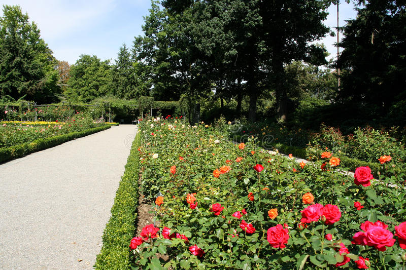 Berna, Svizzera fotografia stock libera da diritti