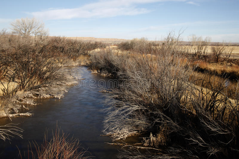Bernardo State Game Reserve. Arizona, USA royalty free stock photography